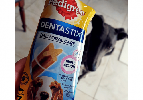 Treat your pets (& their gums) with Pedigree