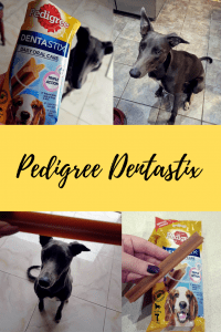 Pedigree Dentastix – the best treat for your pets (& their gums)!, Sugar & Spice