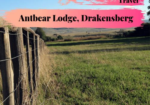Antbear Lodge – VLOG